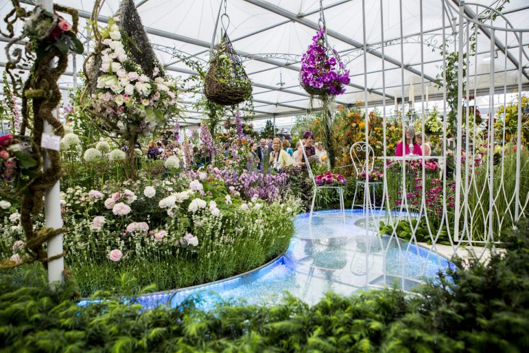 Chelsea flower show garden coming home to royal leamington spa the leamington observer - Royal flower show ...