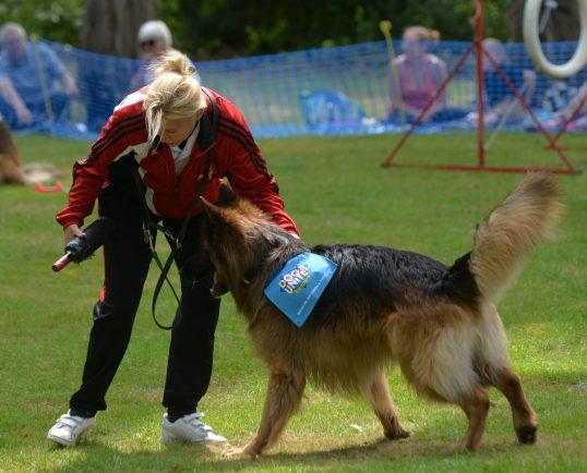 Leamington Dog Kennels